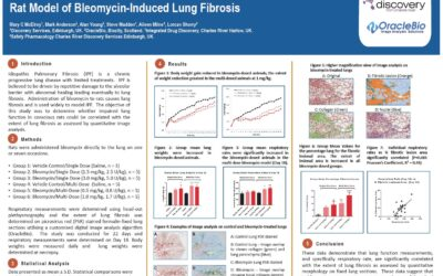 Respiratory Function and Quantitative Measurement of Fibrosis in a Rat Model of Bleomycin-Induced Lung Fibrosis