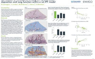 Correlation of Nintedanib Efficacy on Fibrotic Lesion Deposition and Lung Function within a Rat IPF Model