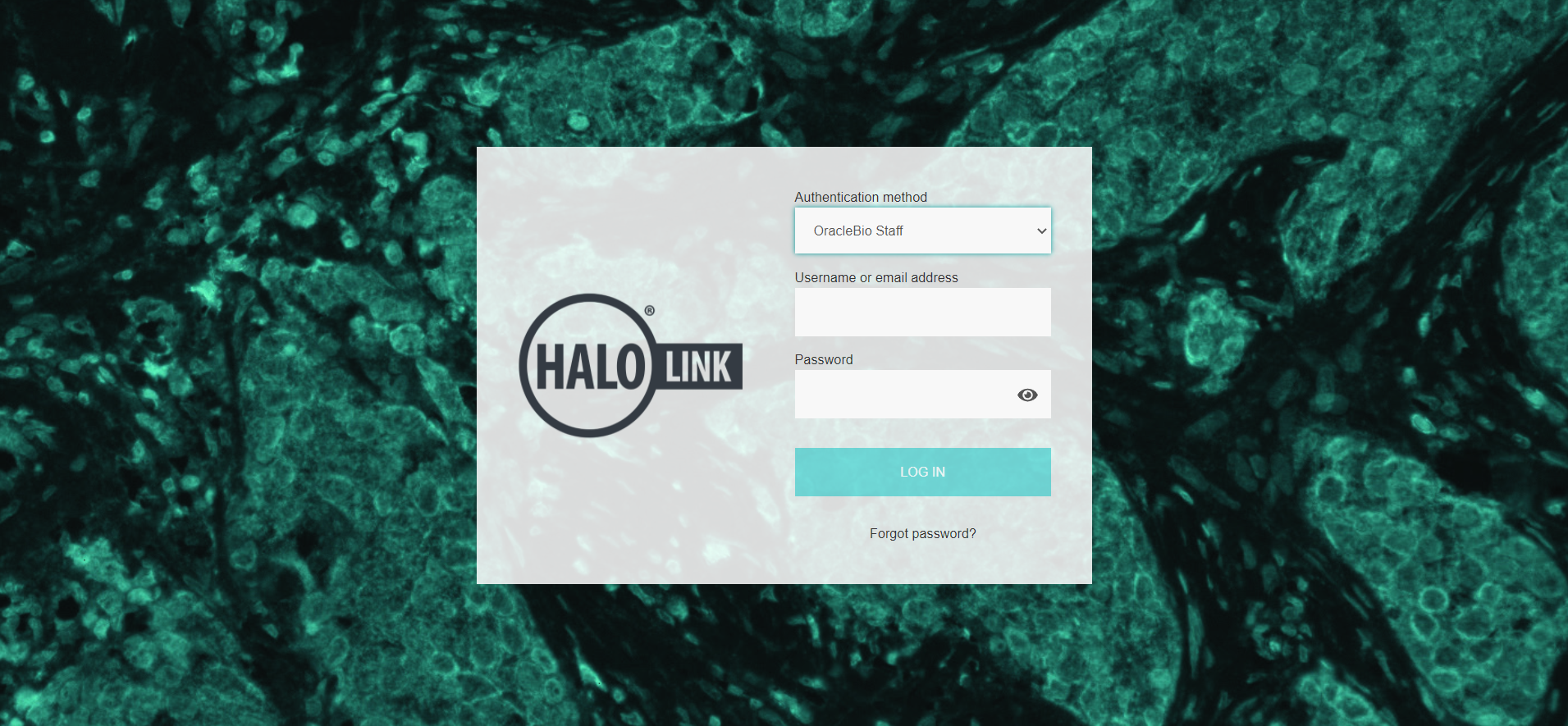 Indica Labs HALO Link