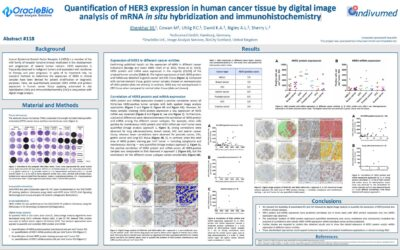 Quantification of HER3 expression in human cancer tissue by digital image analysis of mRNA in situ hybridization and immunohistochemistry