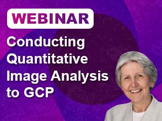 Conducting Quantitative Image Analysis to GCP